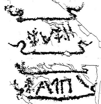 ornitomorfo roccia 50